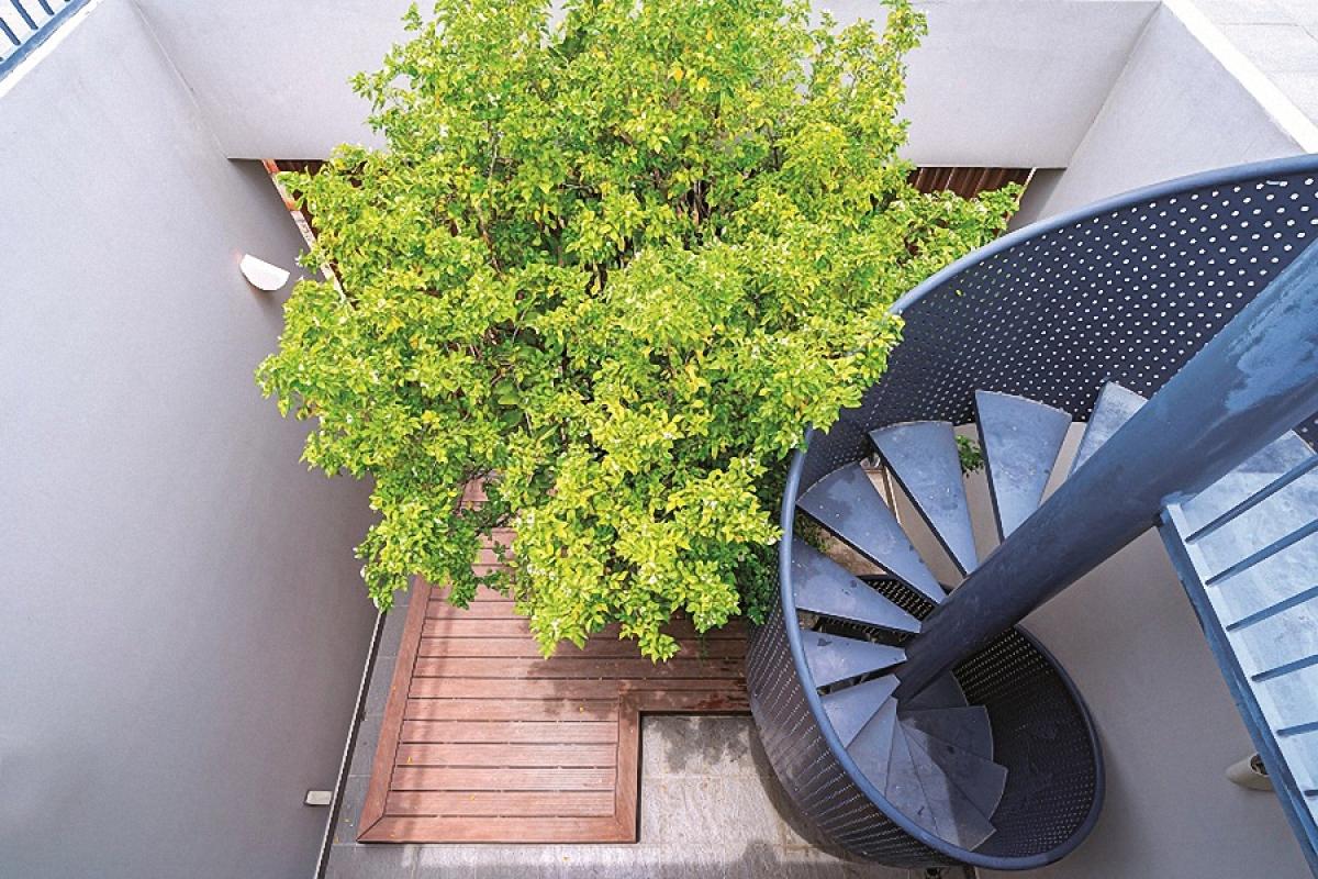 Yêu cầu của chủ nhà cũng là quan điểm thiết kế của kiến trúc sư: một ngôi nhà không chỉ là nơi để bảo vệ con người khỏi những tác động xấu của môi trường, mà còn là nơi kết nối giữa con người với con người, giữa con người với thiên nhiên và hơn nữa là góp phần tạo nên một khoảng thở, một hệ sinh thái xanh tự nhiên cho đô thị.