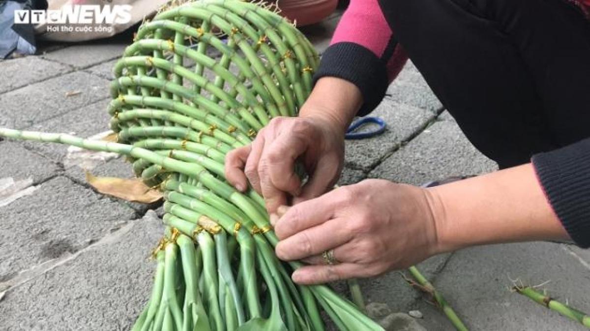 Mặc dù còn 1 tháng nữa mới tới Tết Nguyên đán Tân Sửu 2021 nhưng thị trường cây phát lộc ở xã Minh Tân (Đông Hưng, Thái Bình) những ngày này khá nhộn nhịp cảnh mua - bán.