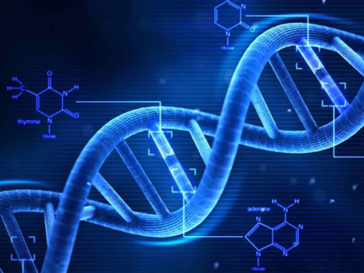 Di truyền: Nghiên cứu cho thấy sự đa dạng di truyền có thể là nguyên nhân gây bốc hỏa. Đây là lý do vì sao một số phụ nữ gặp phải triệu chứng bốc hỏa sớm hơn và trong thời gian dài hơn những người khác.
