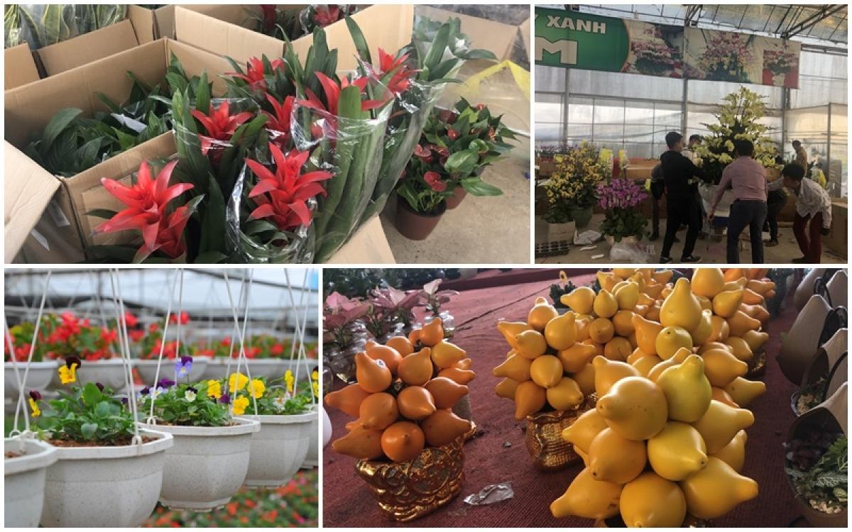 """Hàng Tết ngập tràn trong """"đại siêu thị"""" ở Xuân Quan."""