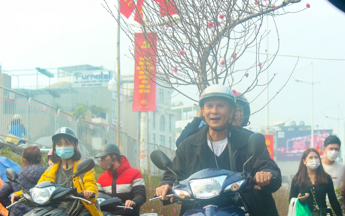 Hung, a local resident, says he does not care much about the price, because according to him a blossoming peace branch brings good luck in a new year.