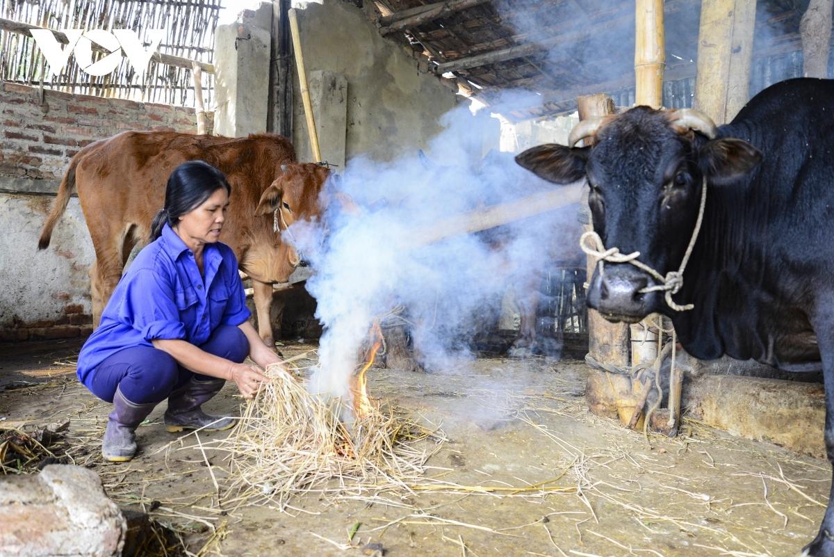 Nhiệt độ xuống thấp, đặc biệt là về đêm khiến cuộc sống người dân vùng cao Nghệ An bị đảo lộn.