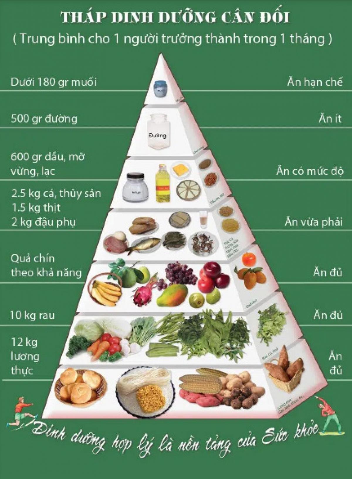 Không nên tiêu thụ quá nhiều đạm và chất béo