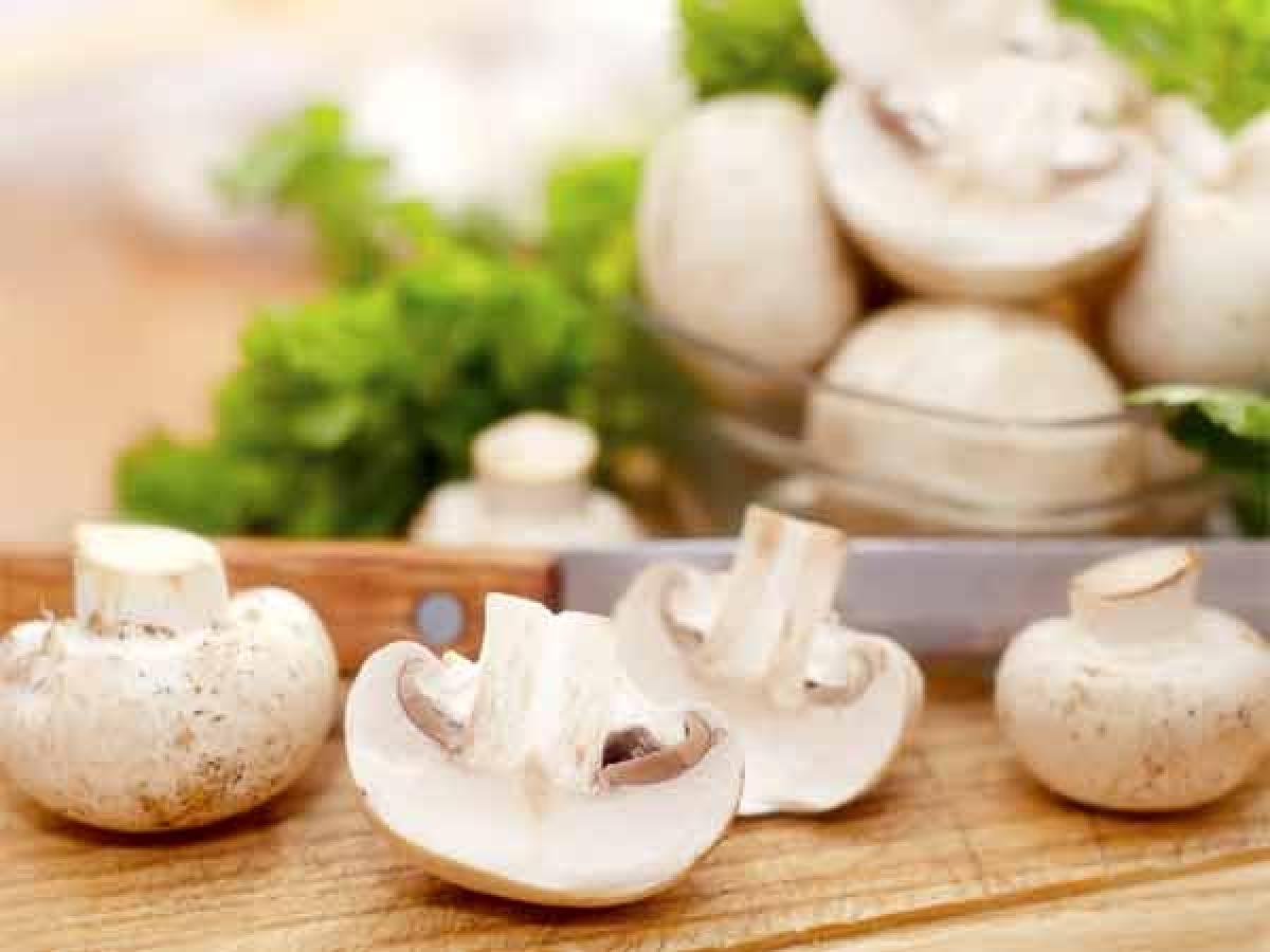 Nấm: Nấm nên được ăn ngay sau khi chế biến, vì các protein trong nấm bắt đầu phân hủy ngay sau khi nấm được hái, do đó có thể gây hại cho dạ dày.
