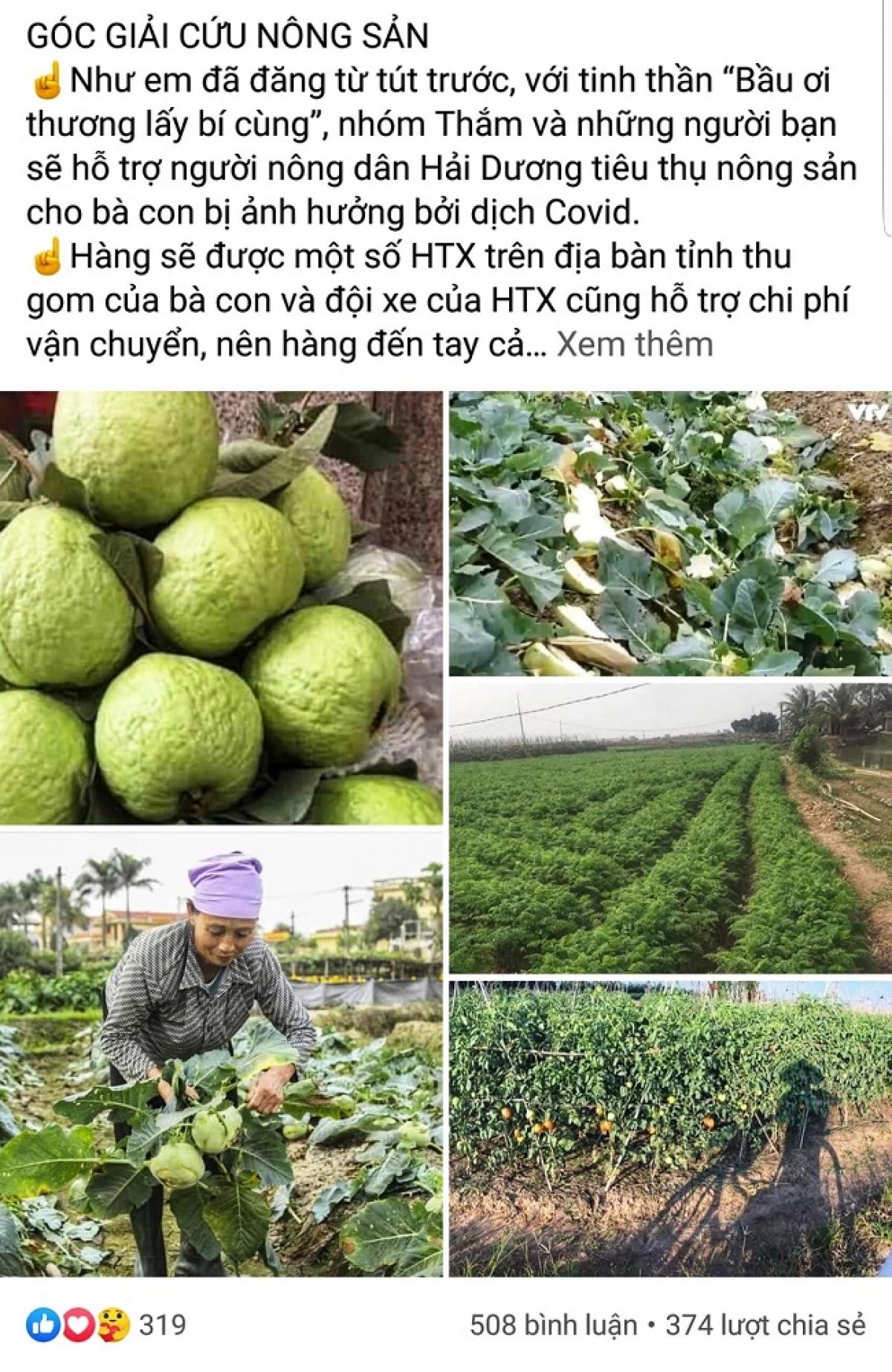 Các cá nhân kêu gọi mọi người hỗ trợ tiêu thụ nông sản của tỉnh Hải Dương. (Ảnh chụp màn hình)