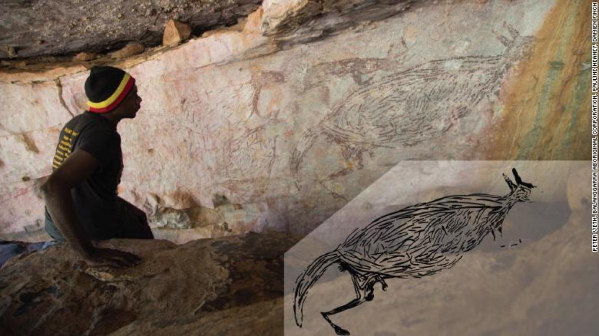 Bức tranh kangoroo. (Ảnh: CNN)