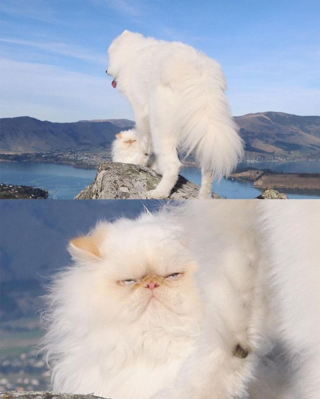 Thỉnh thoảng, Romeo không thể hiểu làm thể nào Casper có thể cười mọi lúc mọi nơi như vậy.