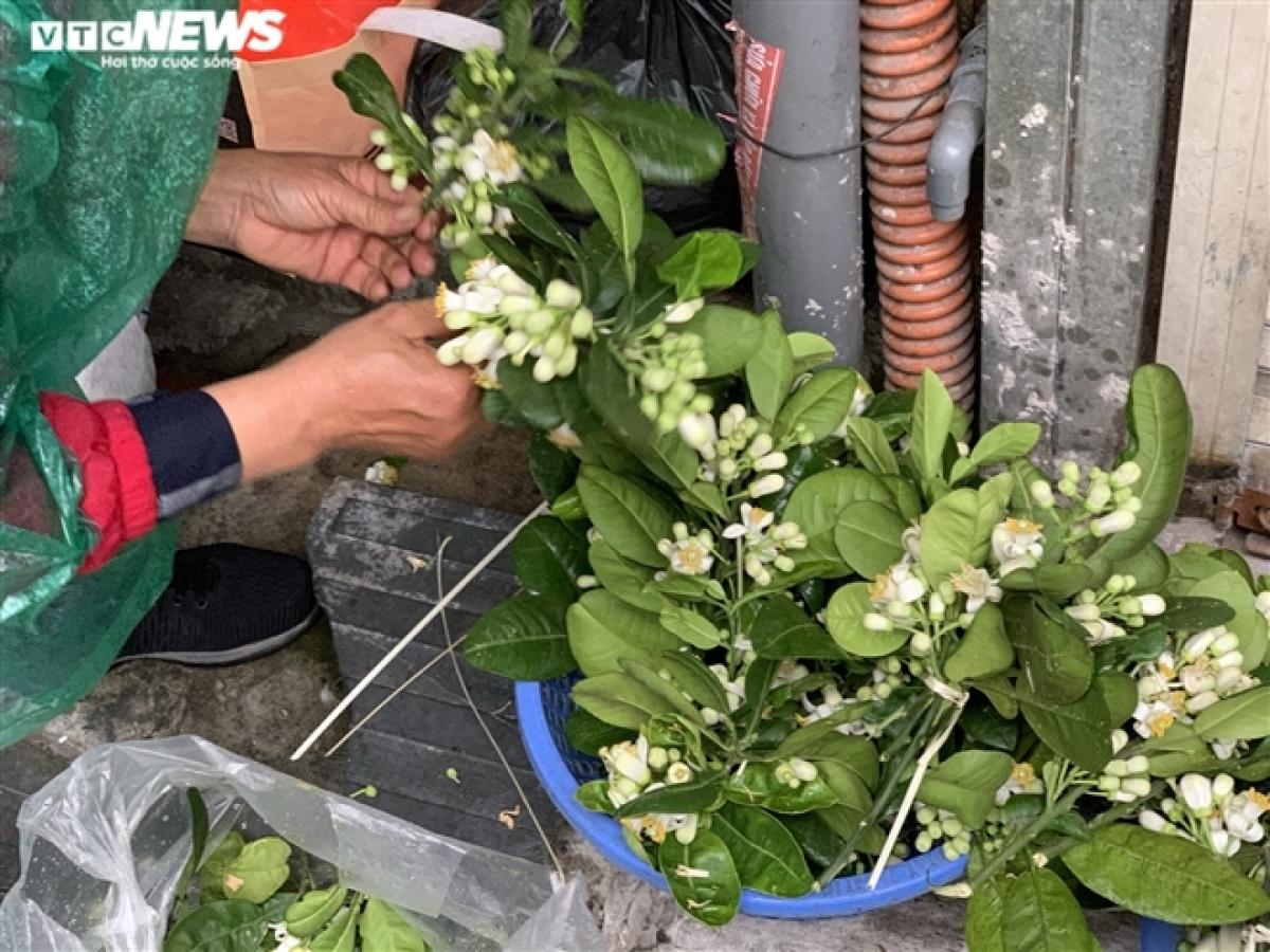 Hoa bưởi tươi ở chợ Nguyễn Công Trứ (quận Hai Bà Trưng) khá đắt khách. Mỗi cành hoa được bán giá 10.000 đồng.