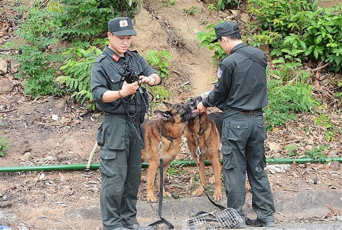 Lực lượng chức năng huy động chó nghiệp vụ tới hiện trường để truy bắt đối tượng.