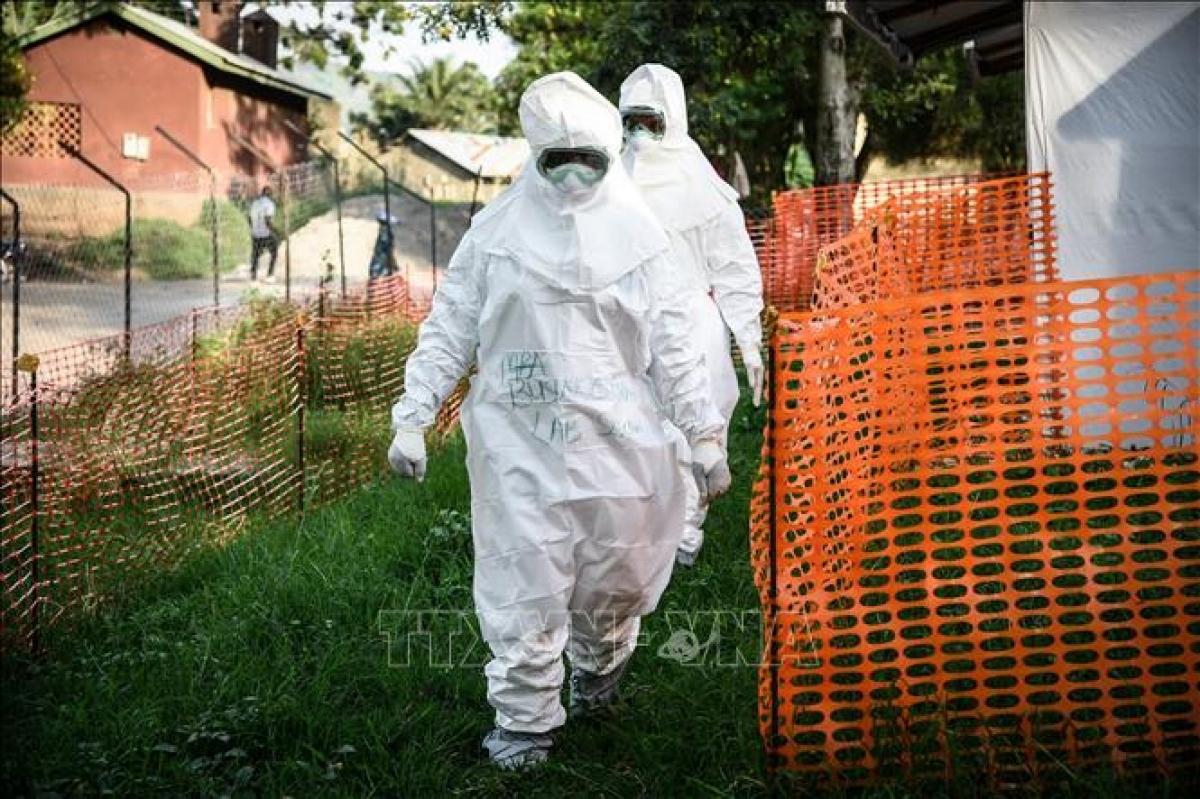 WHO cảnh báo 6 nước Châu Phi về dịch Ebola (Ảnh minh họa: KT)