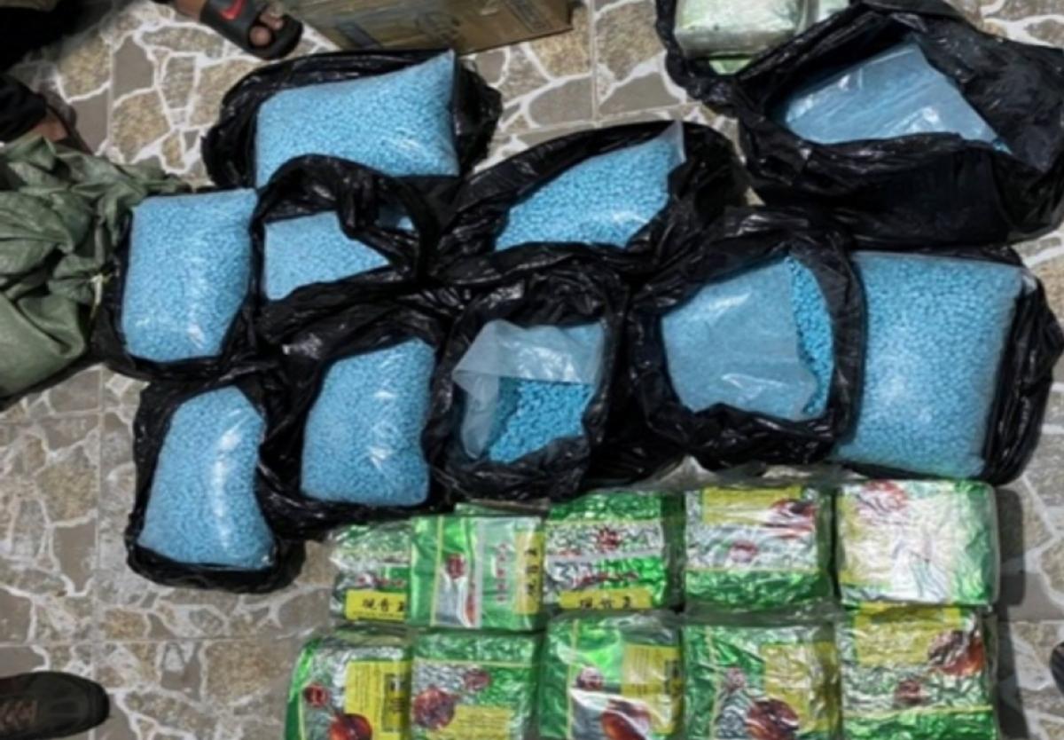 Gần 220 kg ma túy các loại bị thu giữ