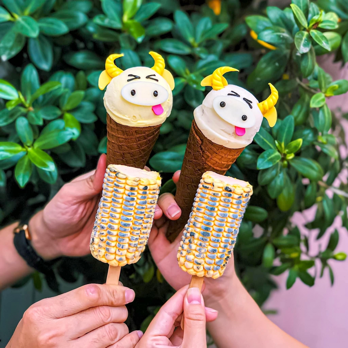 A variety of flavours are on offer to satisfy the demands of both children and adults, with a single ice cream costing VND55,000. (Photo: Roseicesaigon)