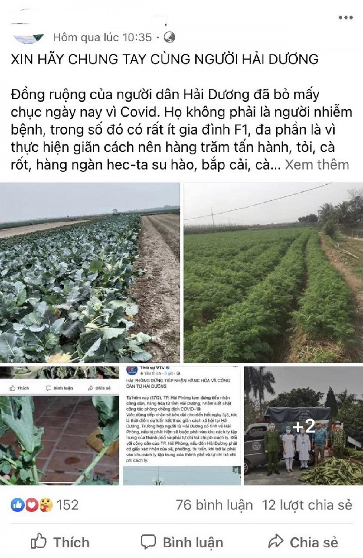 Các bài viết kêu gọi giải cứu nông sản Hải Dương nhận được sự hưởng ứng lớn của cộng đồng mạng (Ảnh chụp màn hình)