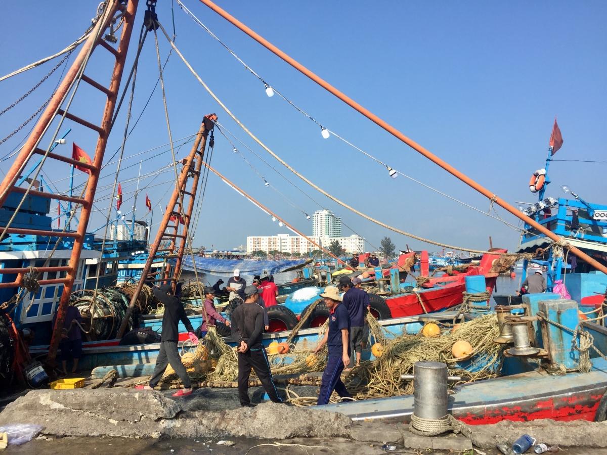 Quá tải số lượng tàu thuyền về neo đậu cũng là nguyên nhân gây ra cháy nổ tại cảng cá Thọ Quang.