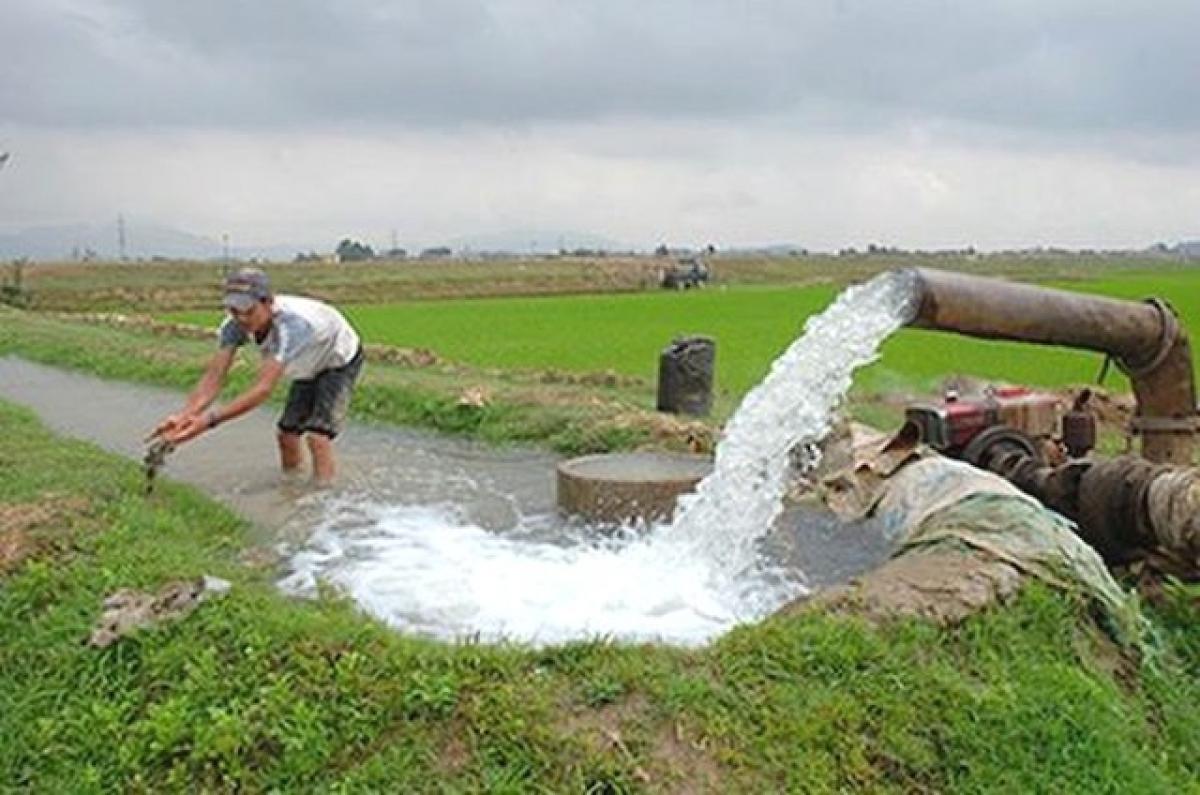 Hệ thống thủy lợi các địa phương tích cực lấy nước phục vụ việc gieo cấy lúa.