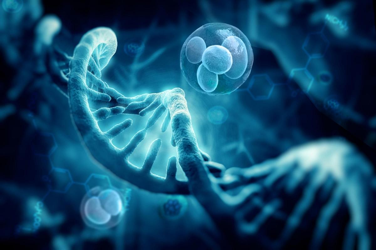 Di truyền: Giống như nhiều đặc tính cơ thể khác, loại da cũng một phần được quyết định bởi các yếu tố di truyền. Nếu di truyền khiến bạn có nhiều tuyến bã nhờn dưới da hơn, hiển nhiên da bạn sẽ tiết dầu nhiều hơn.