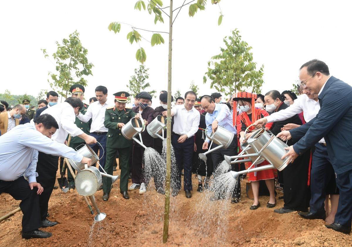 Thủ tướng phát động trồng 1 tỷ cây xanh tại Tuyên Quang