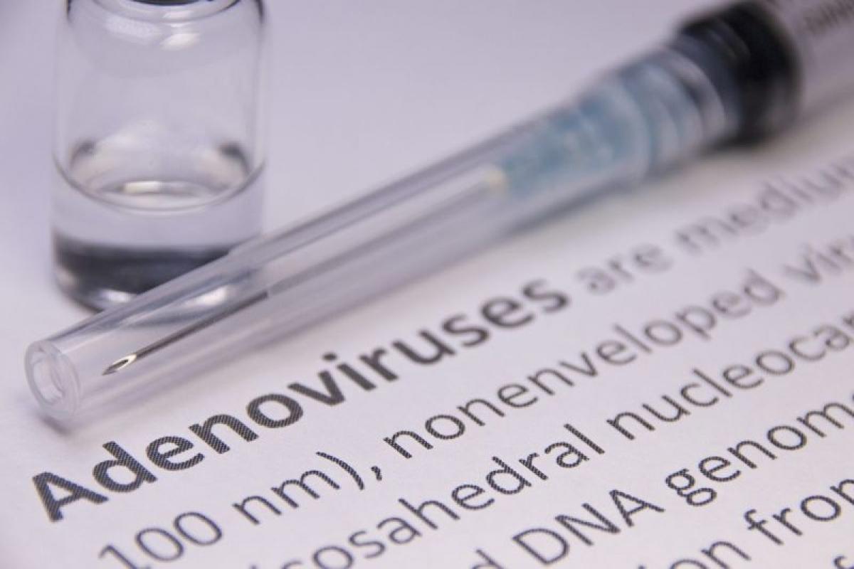 Nhiễm virus: Một số loại virus kích thích sự hình thành các tế bào mỡ. Adenovirus-36 là loại virus chính gây tăng cân ở người nhiễm. Đây là loại virus ảnh hưởng đến đường tiêu hóa và đường hô hấp, chủ yếu ở trẻ em.