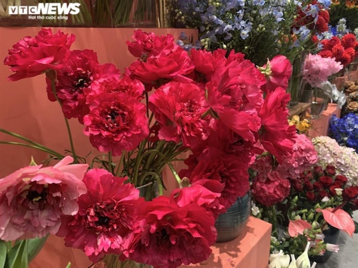 Cận cảnh những bông hoa có giá 350.000 đồng cho mỗi bông.
