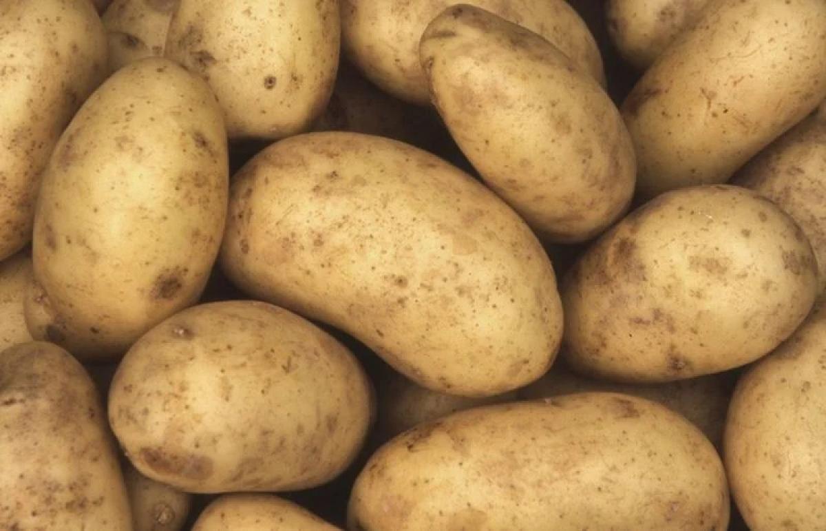 Khoai: Khoai rất giàu kali, nhờ đó giúp giữ cân bằng điện giải trong cơ thể. Khoai tây trắng, khoai tây đỏ và khoai lang đều giàu các dưỡng chất và các vitamin A, C./.
