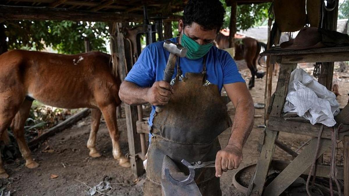 Mất nghề du lịch, Yusmani Garcia trở về công việc thợ rèn, làm móng ngựa. Nguồn: AFP