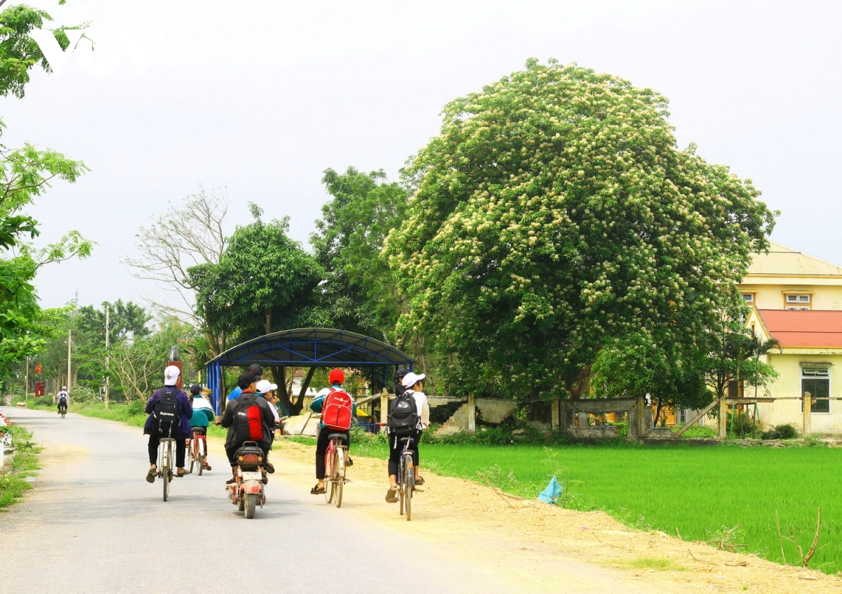 Hoa Bun is also closely linked to the Vietnamese people's rural life in the countryside.
