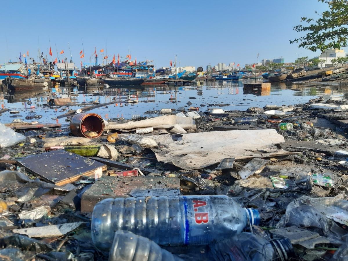 """Rác thải từ hoạt động của tàu cá, chợ hải sản, các xưởng đóng tàu và khu dân cư đã biến âu thuyền thành """"túi"""" đựng rác không lồ, ô nhiễm kéo dài."""