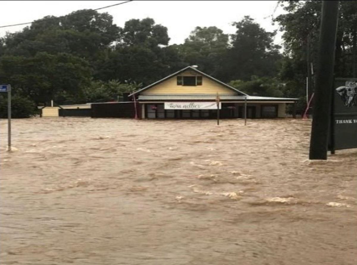 Một ngôi nhà tại Camden Haven thuộc bang New South Wales, Australia bị chìm trong nước. (Nguồn: Sophie Love)