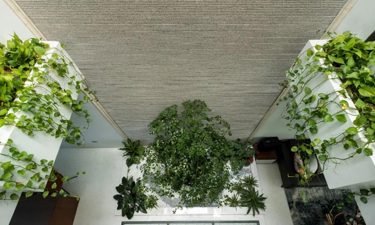 Khu tiểu cảnh nằm trọn trong khoảng thông tầng rộng 6m2. Do ánh sáng lấy thẳng từ mái xuống sàn tầng một, các bồn cây xung quanh khoảng thông tầng luôn xanh tốt. Khoảng thông tầng cũng giúp các phòng ngủ trên tầng hai dễ dàng nhìn xuống tầng một.