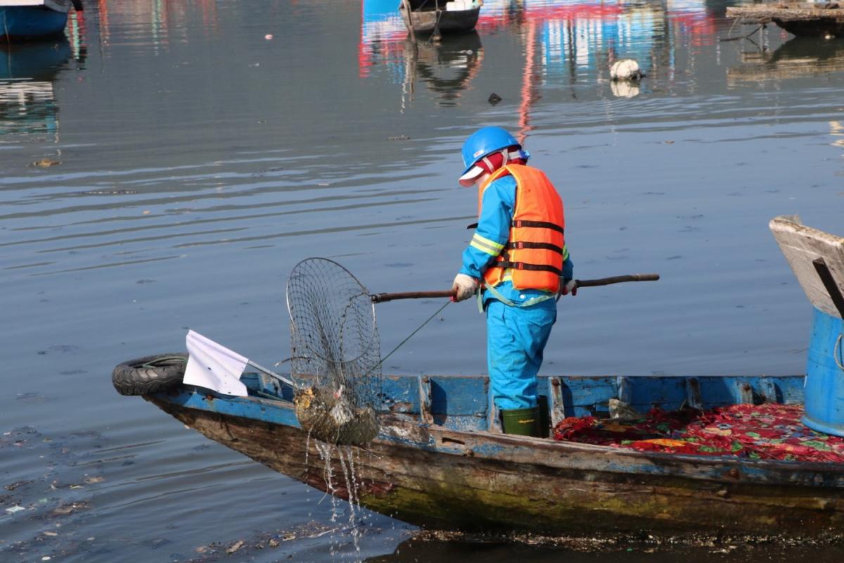 Sau khi tập trung thu gom rác, tình trạng ô nhiễm tại âu thuyền Thọ Quang đã được cải thiện bước đầu
