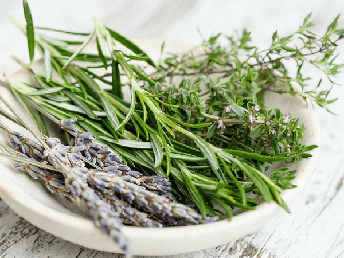 Hương thảo: Hương thảo chứa menthol và chlorophyll, các chất này rất hiệu quả trong việc bảo vệ cơ thể khỏi các vi khuẩn gây mùi, do đó hương thảo có thể được sử dụng như một nguyên liệu khử mùi tự nhiên.