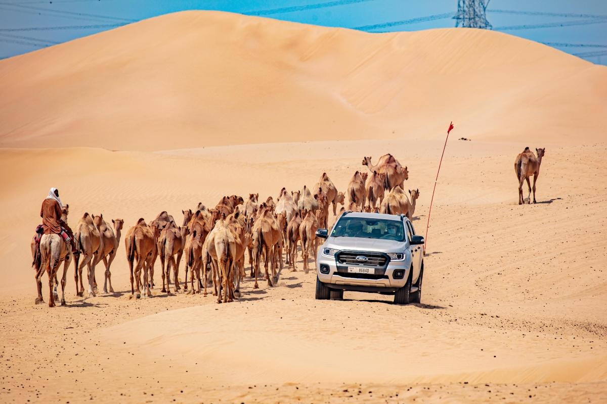 """Để thử khả năng """"chịu đựng"""" của mẫu Ranger, Fod đã mang mẫu xe đến sa mạc ở Trung Đông để kiểm tra."""