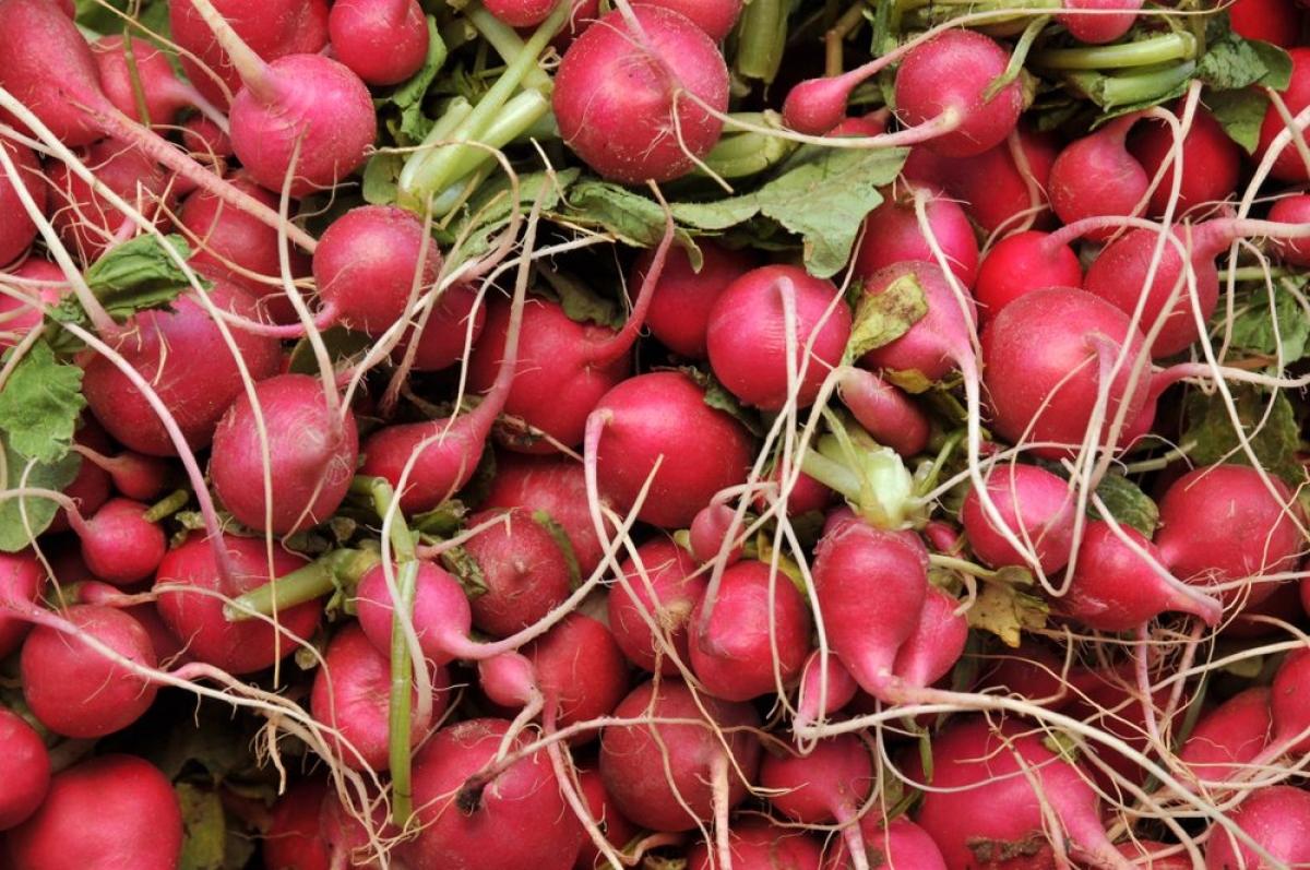 Củ cải: Không phải ai cũng thích ăn củ cải đường do vị hơi đắng của nó. Tuy nhiên, loại củ này lại rất có lợi cho tuần hoàn máu, nhờ có chứa các khoáng chất giúp điều hòa huyết áp và tăng cường tuần hoàn máu.