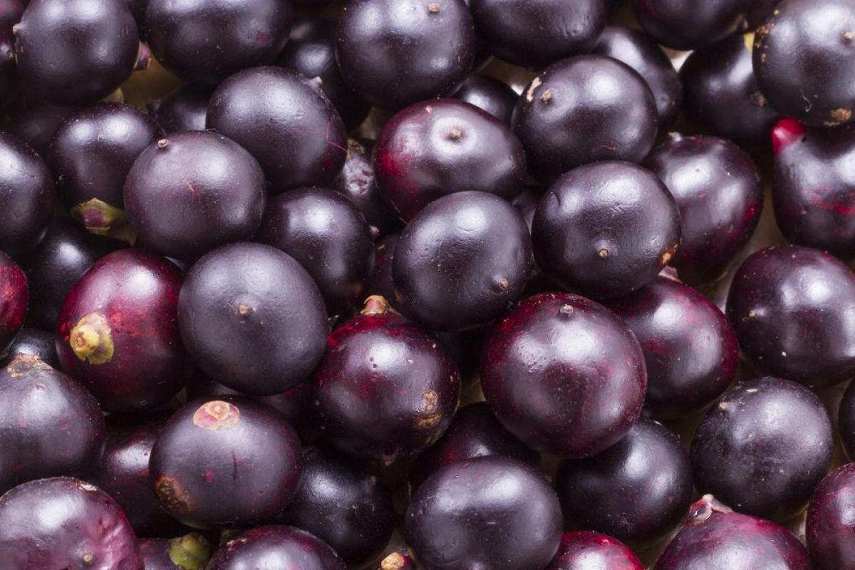 Quả acai berry: Quả acai berry rất giàu các sterol thực vật giúp thư giãn các mạch máu và cải thiện tuần hoàn. Trái cây này còn rất giàu vitamin A và kali.