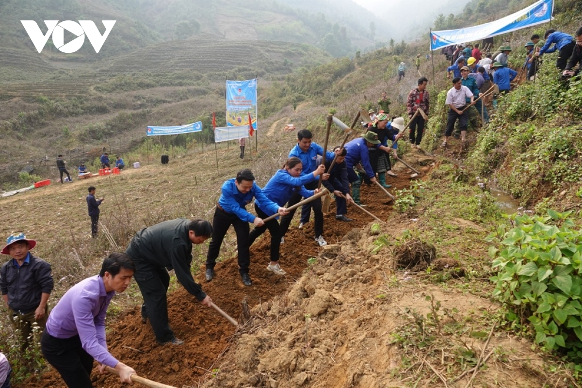 The Youth Union members in the northern province of Yen Bai plant trees in an attempt to make mountainous areas greener and to protect the local environment.