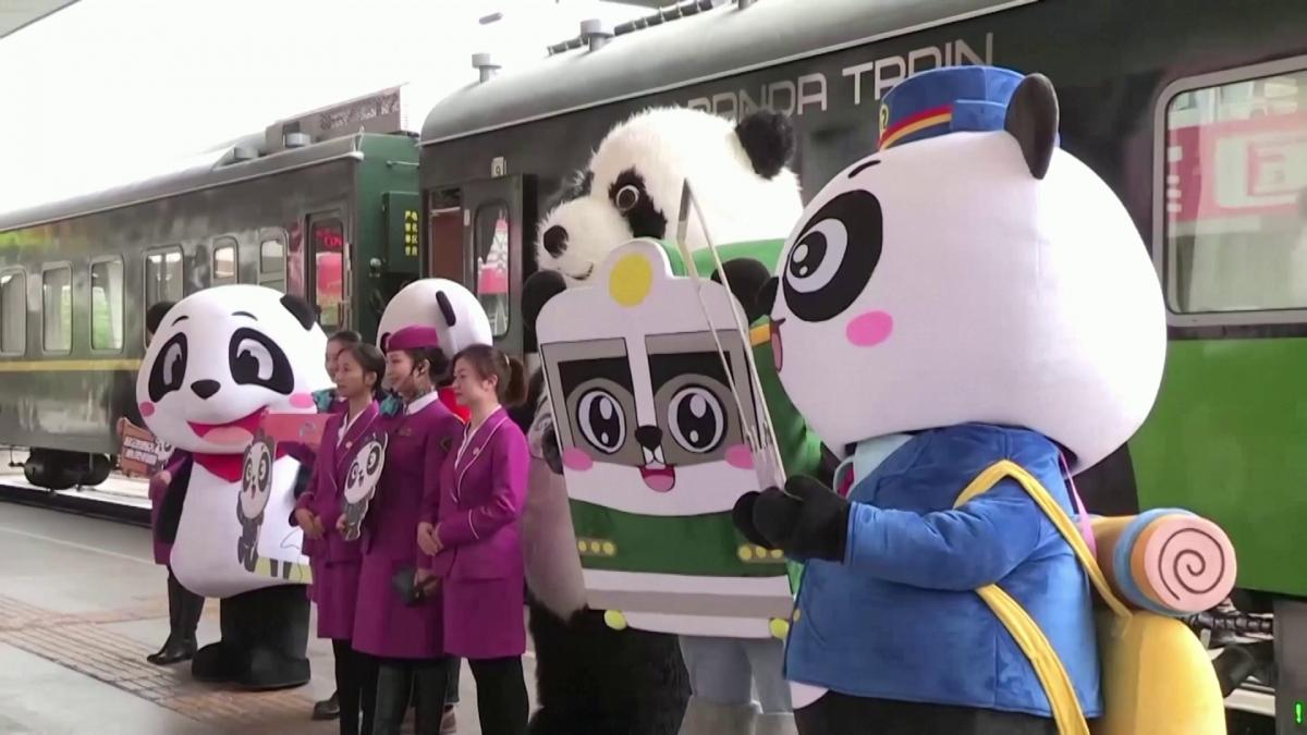 Nhân viên đoàn tàu gấu trúc chào đón hành khách. Nguồn: Reuters