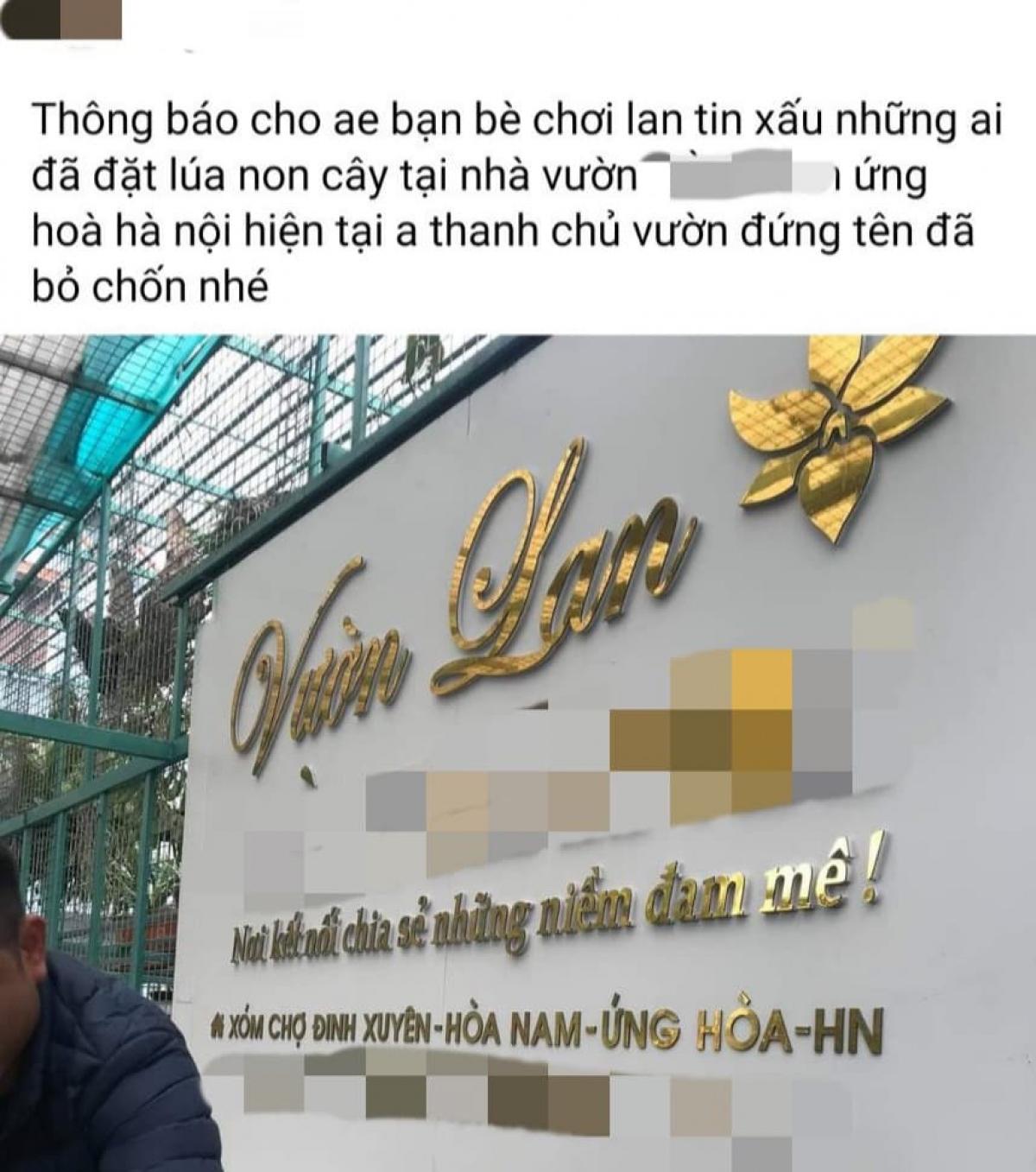 """Chủ tài khoản của một Facebook chia sẻ trên diễn đàn hoa lan đột biến về vụ việc chủ một vườn lan ở xã Hoài Nam, huyện Ứng Hòa, Hà Nội """"ôm"""" 200 tỷ đồng của khách bỏ trốn."""