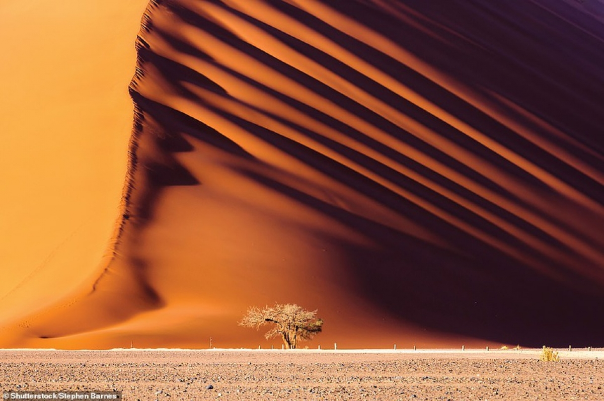 A 170-metre-high dune is captured at Amib-Naukluft National Park in Namibia.