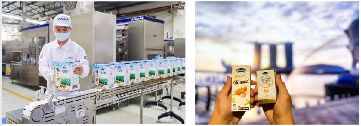 Quí 1/2021 doanh thu xuất khẩu của Vinamilk tăng trưởng trên 8% với nhiều tin tích cực từ các thị trường nước ngoài.