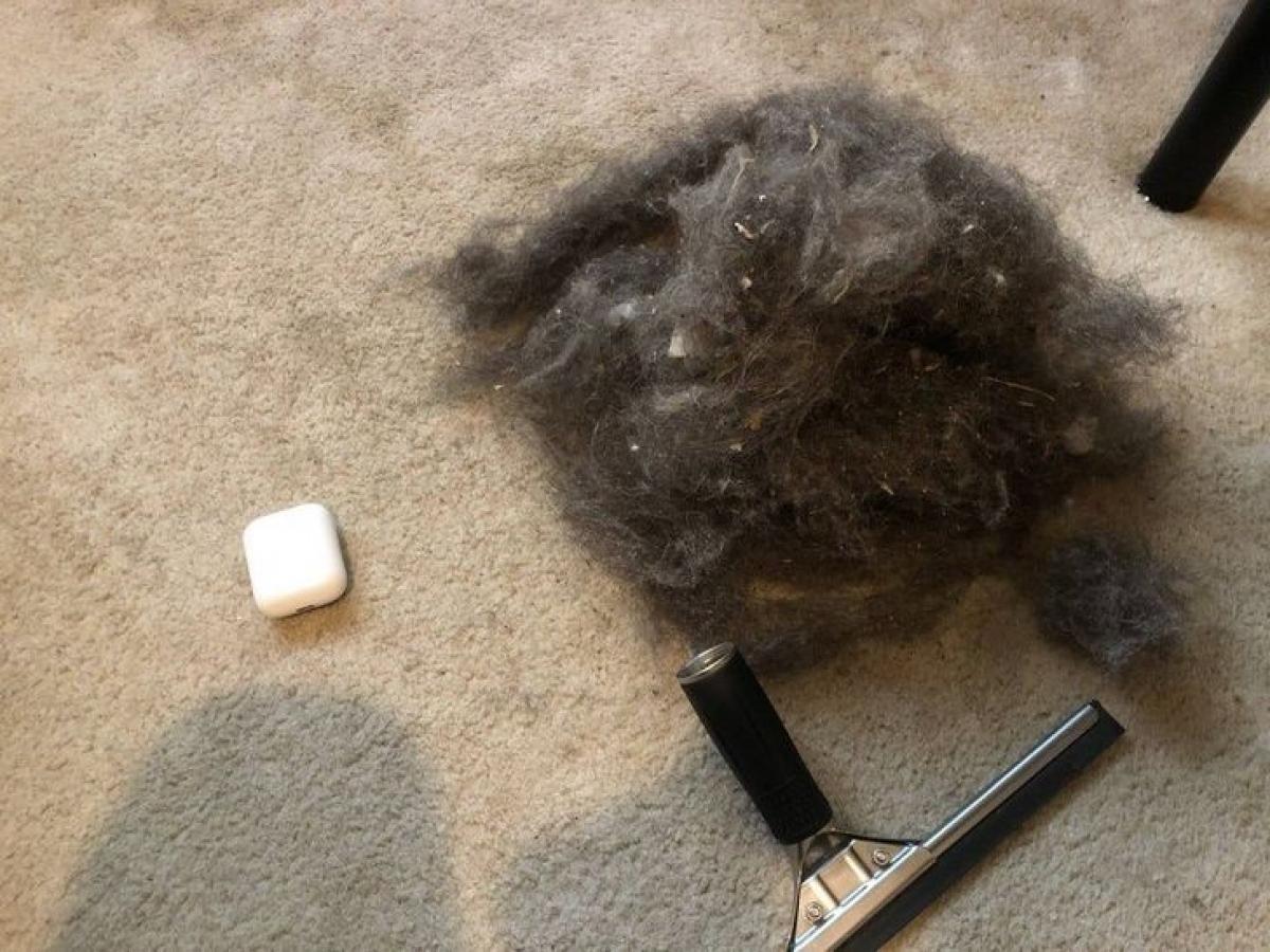 Thảm giúp nhà thêm xinh xắn, ấm cúng song chúng là nơi tích tụ bụi, lông vật nuôi, tóc, rác bẩn... Không phải loại máy hút bụi nào cũng đủ mạnh để làm sạch thảm, trong trường hợp này bạn hãy sử dụng một chiếc chổi làm từ cao su. Bạn lăn chổi qua tấm thảm để kéo rác lên, sau đó sử dụng máy hút bụi để làm sạch thảm dễ dàng.