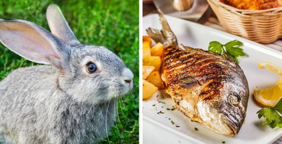 Phụ nữ Bulgaria kiêng ăn thịt thỏ vì lo ngại đứa trẻ sinh ra sẽ ngủ mà mắt luôn mở. Món cá cũng bị cấm bởi họ cho rằng con cái sau này dễ bị bệnh nghẹt mũi và trẻ hay ngáy./.