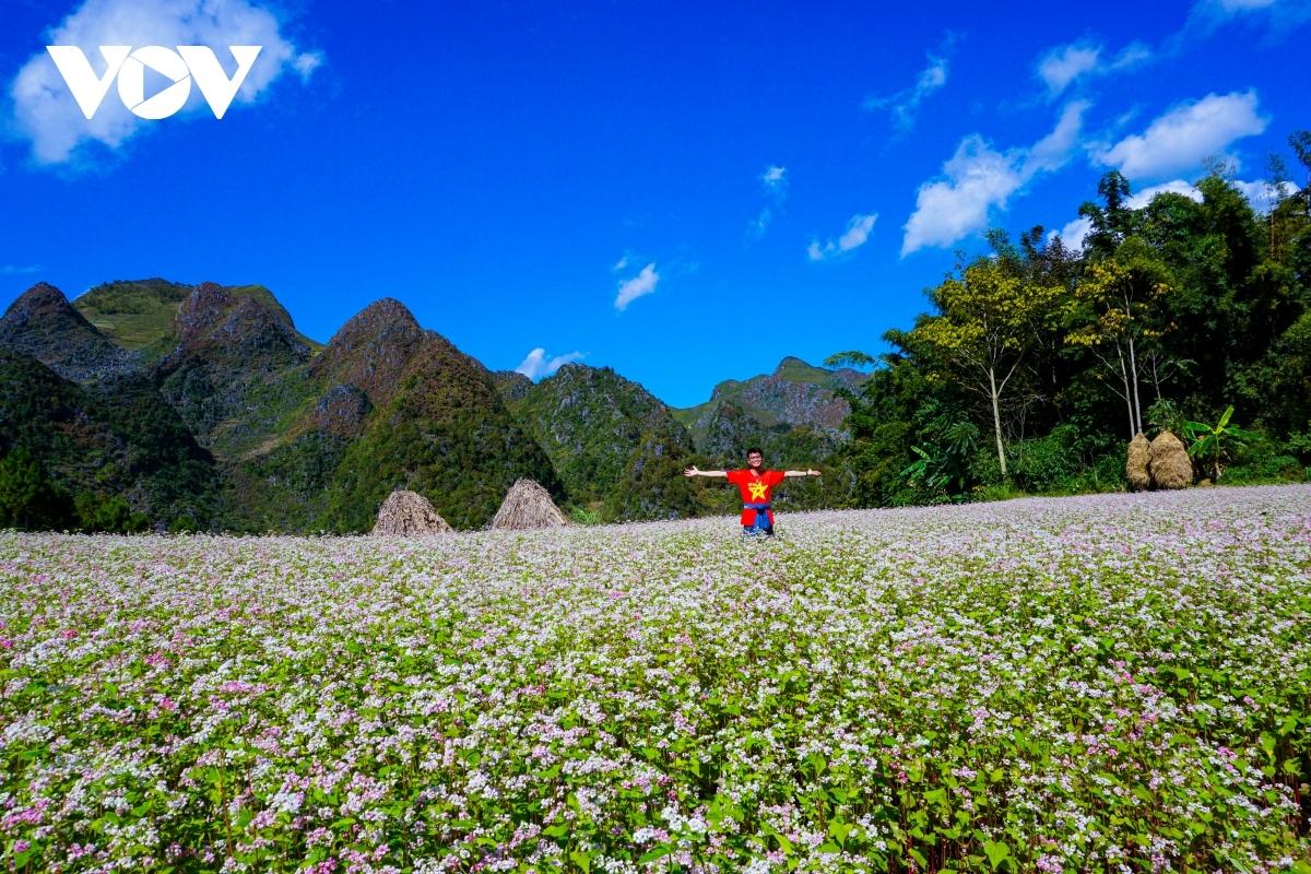 Du khách thích thú với cánh đồng hoa tam giác mạch. Ảnh: Ngô Hải