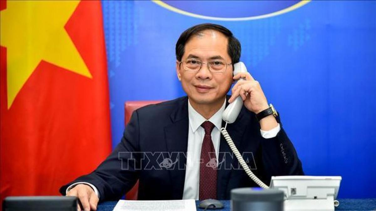 Bộ trưởng Ngoại giao Bùi Thanh Sơn (Ảnh: TTCVN)
