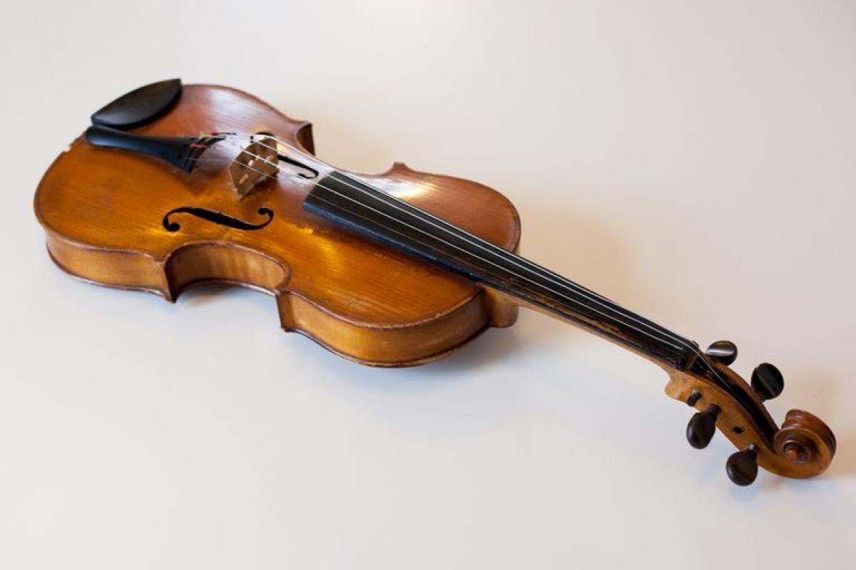 Nam Dakota: Vĩ cầm. Vĩ cầm được công nhận là nhạc cụ của bang Nam Dakota vào năm 1989.