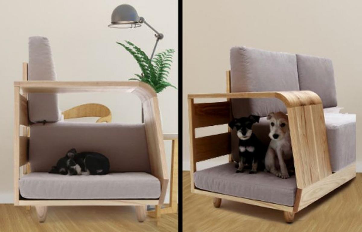 Sofa tích hợp nhà cho cún cưng, tại sao không?