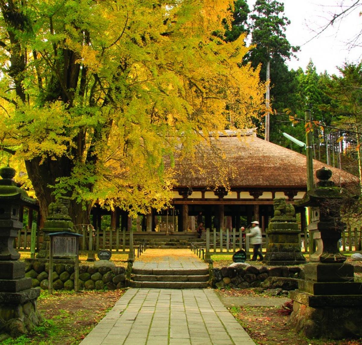 Đền Shingu Kumano được coi là tài sản văn hóa quan trọng của Nhật Bản. Được xây dựng từ thời kỳ Heian, kiến trúc của ngôi đền có những thay đổi theo thời gian. Ngày nay, du khách có thể tham quan những di sản văn hóa của Fukushima và Nhật Bản được lưu giữ tại đây. Ngoài ra, trong khuôn viên ngôi đền còn có một cây bạch quả cổ thụ 800 tuổi, mỗi mùa thu đến, lá cây đổi màu nhuộm vàng cả không gian xung quanh.