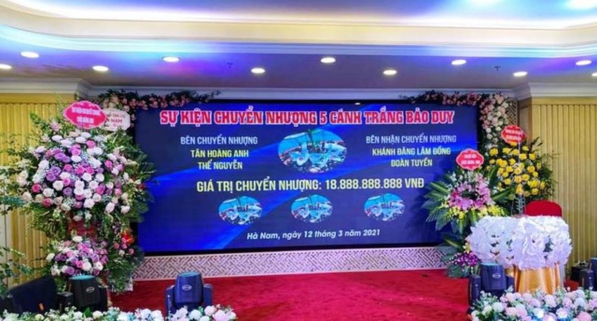 Một vụ chuyển nhượng lan đột biến 5 cánh trắng Bảo Duy với giá trị hơn 18 tỷ đồng gây xôn xao dư luận ở Hà Nam.