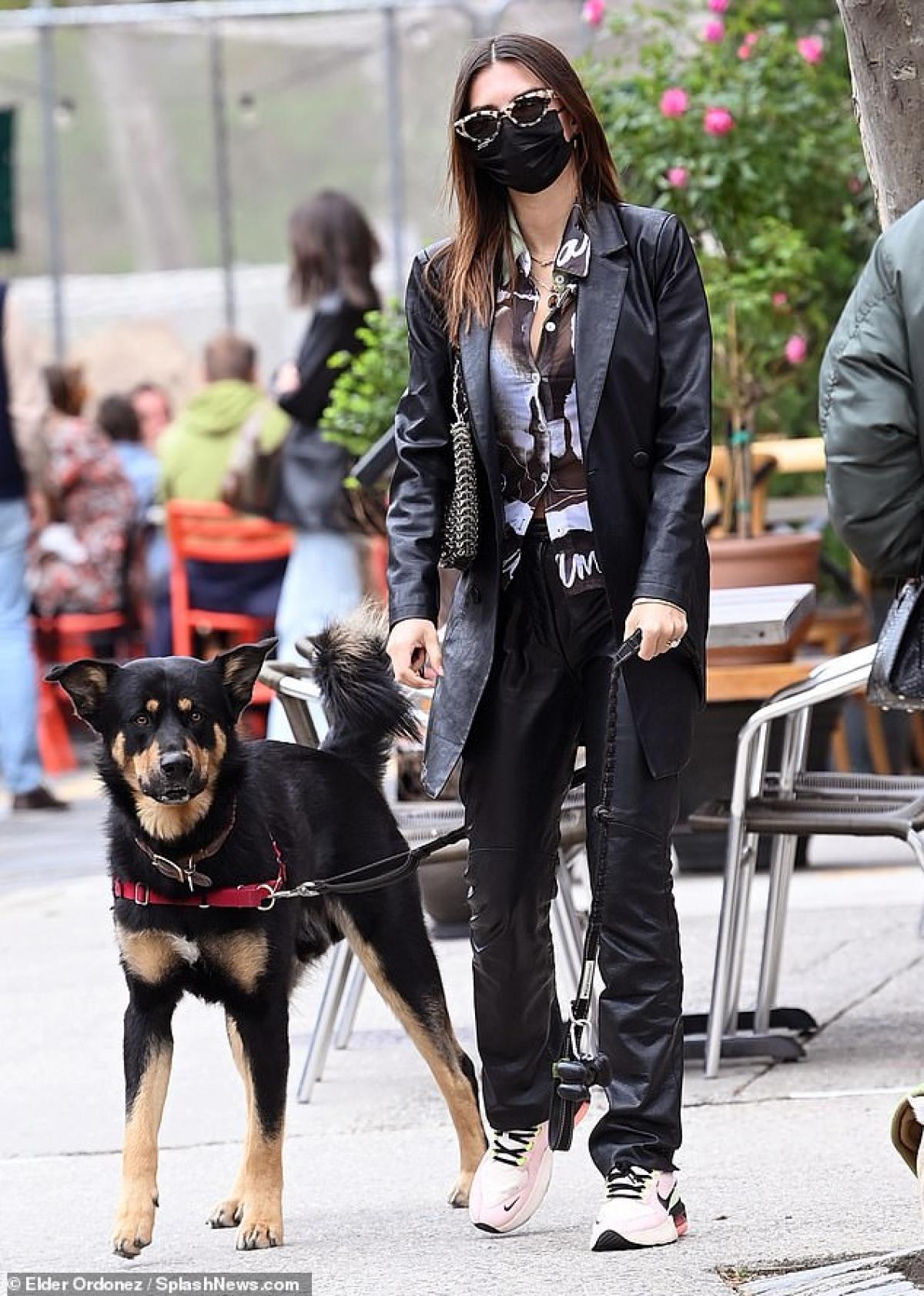 Mới đây, Emily Ratajkowski bị cánh săn ảnh bắt gặp khi đang dắt thú cưng ra phố đi dạo ở New York.