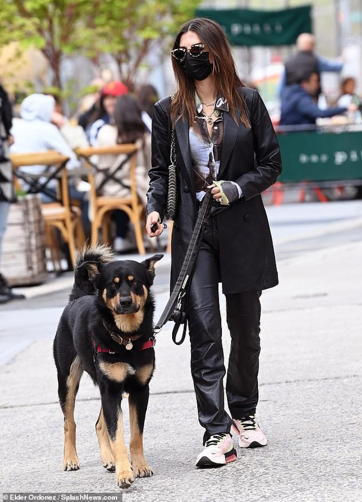 """""""Chân dài"""" dắt chú chó Colombo và tranh thủ ghé vào một nhà hàng để ăn trưa trước khi trở về nhà."""