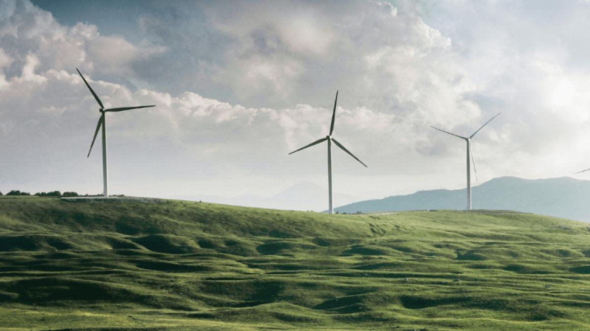 EU nhất trí mục tiêu giảm ít nhất 55% lượng khí CO2 tới năm 2030. Ảnh minh họa: KT